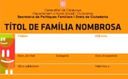 fsaus_descomptes_familia_numerosa