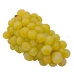 raim_blanc_fruiteria_saus_mini