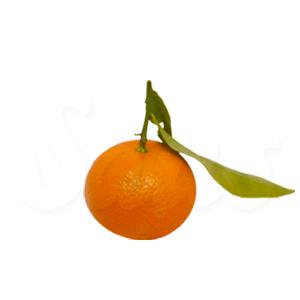 clementina_oferta_fruiteria_saus_vic_mini