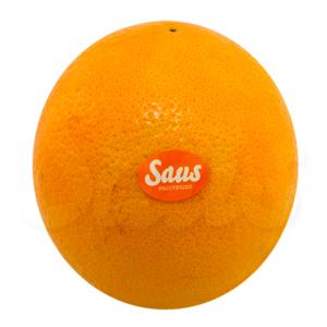 taronja_saus_fruiteria_saus_mini